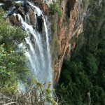 Falls at Springbrook
