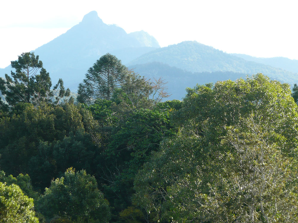 Mt Warning gets Australia's first rays of sun each day