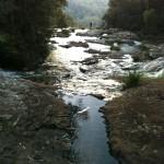 Top of Springbrook Falls